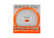 Signum Pro Poly Plasma (1.23) 12m