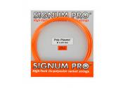 Signum Pro Poly Plasma (1.33) 12m