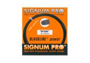 Signum Pro Tornado (1.29) 12m