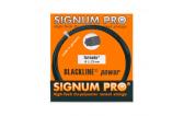 Signum Pro Tornado (1.23) 12m