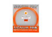 Signum Pro Plasma HEXtreme (1.25) 12m