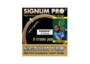 Signum Pro Firestorm (1.25) 12m