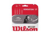 Wilson Sensation (1.25) 12m