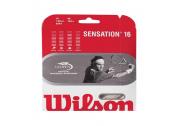 Wilson Sensation (1.30) 12m